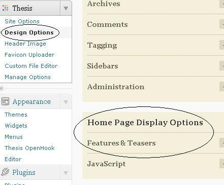 Home Page Display Options Design Options Screen
