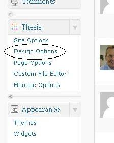 thesis design options