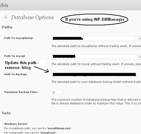 WP-DBManager Path to Backup.